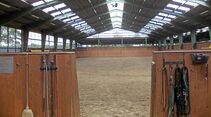 CAV Stall Scout 08_2013 Horse Competence Osterholz 2