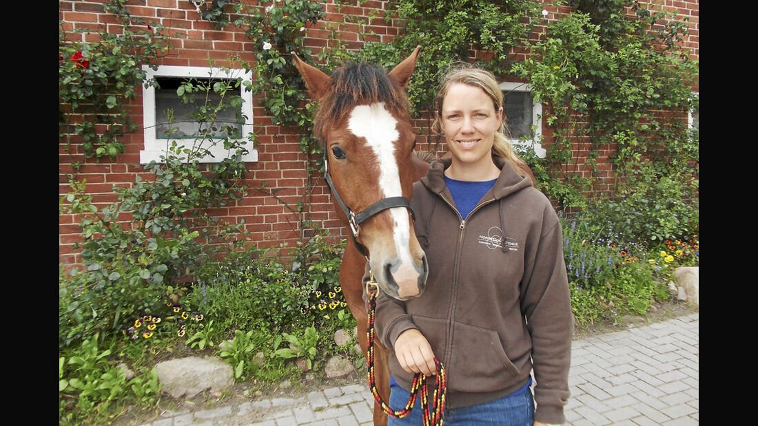 CAV Stall Scout 08_2013 Horse Competence Osterholz Katharina von Lingen