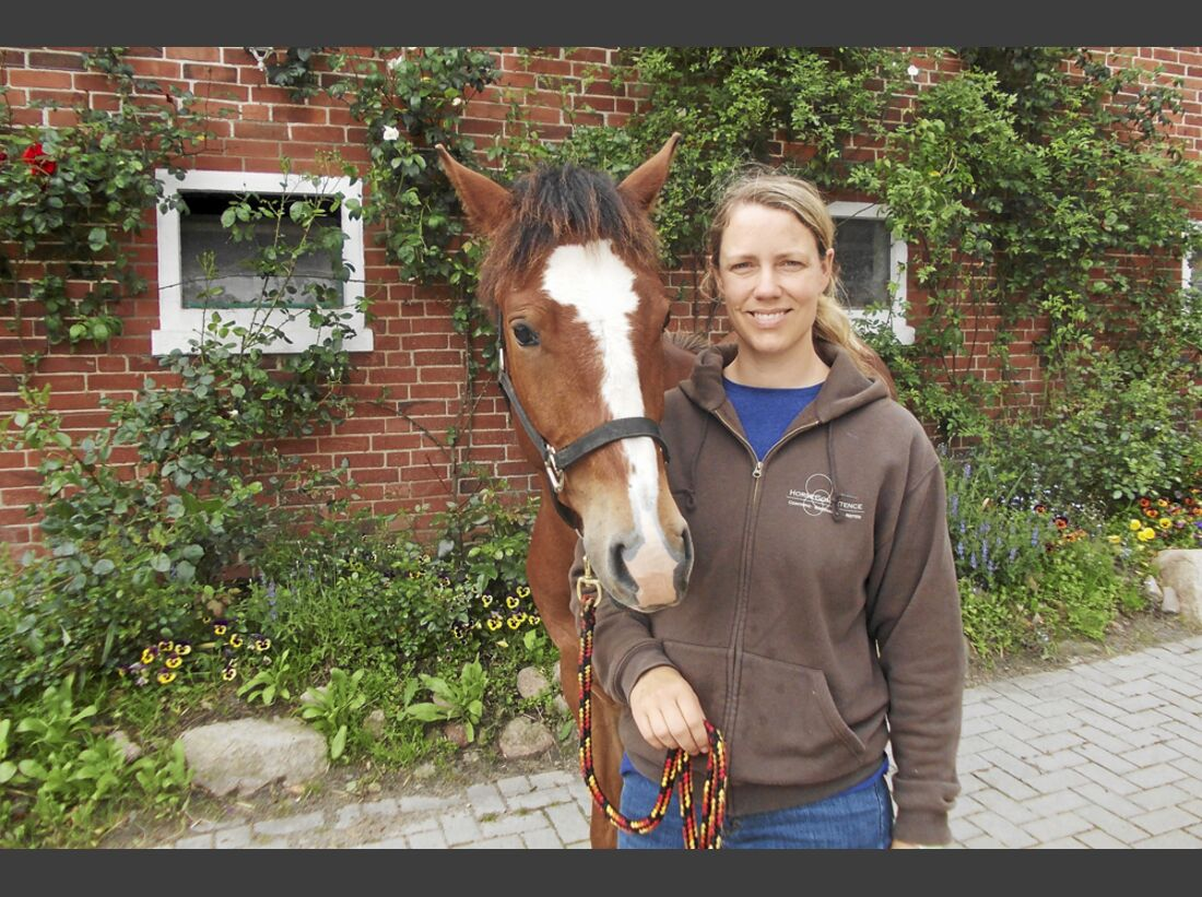 CAV Stall Scout 08_2013 Horse Competence Osterholz Katharina von Lingen