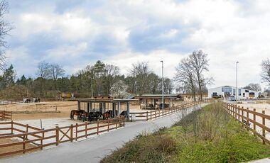 CAV Stall-Scout - Dressur- und Aktivstall Trittau