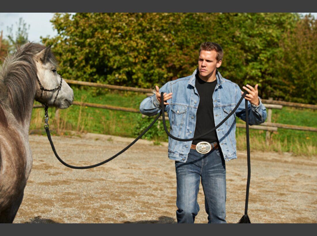 CAV Stimmung Horsemanship Florian Oberparleiter 3