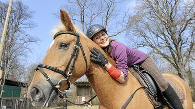 CAV Stimmung Pferd steuern 2