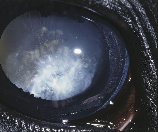 CAV Symptom-Lexikon Periodische Augenentzündung