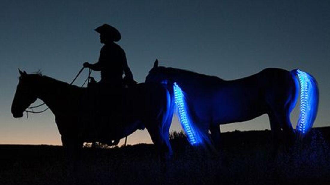 CAV Tail Light Sami Gros LED Schweif Sicherheit