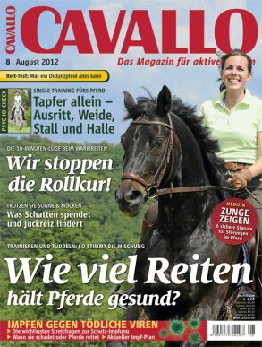 CAV Titel August 2012 - Neu