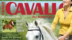 CAV Titel November 2012