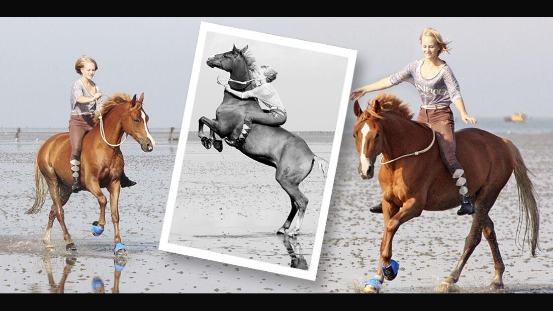 CAV Urlaub mit Pferd Leserfotos