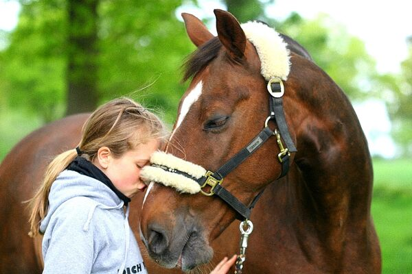 CAV Valentinstag Horselovers 10