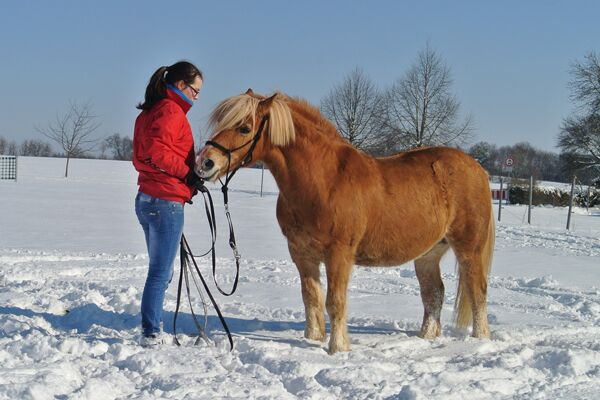CAV Valentinstag Horselovers 26