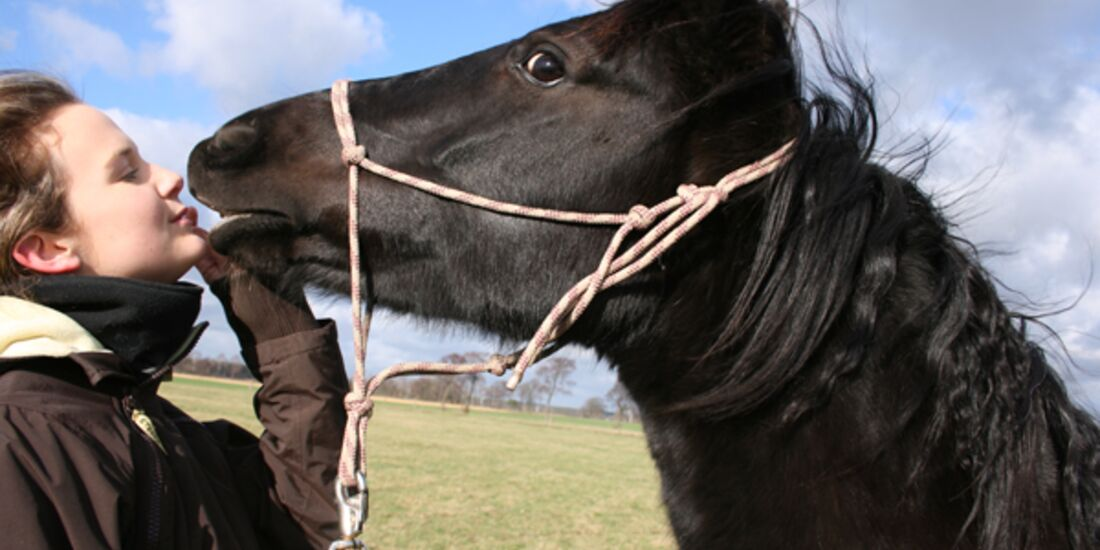 CAV Valentinstag Horselovers 34
