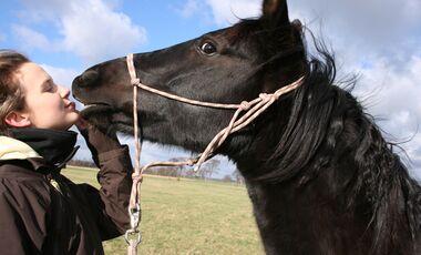 CAV Valentinstag Horselovers 34
