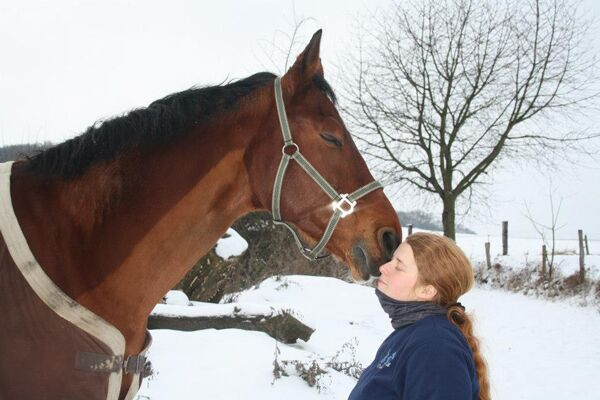 CAV Valentinstag Horselovers 48