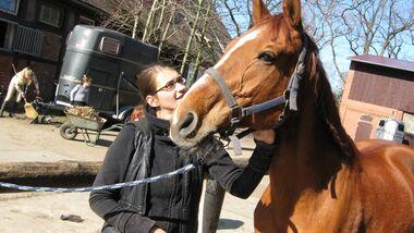 CAV Valentinstag Horselovers 54