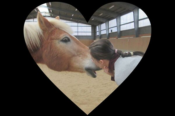CAV Valentinstag Horselovers 64