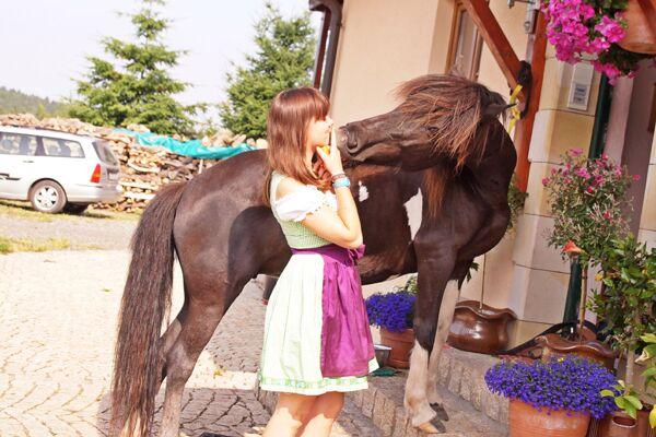 CAV Verfressene Pferde 13