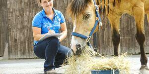 CAV Vivian Gabor mit Pferd