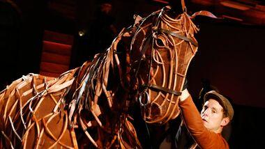 CAV Warhorse 2012 - 5