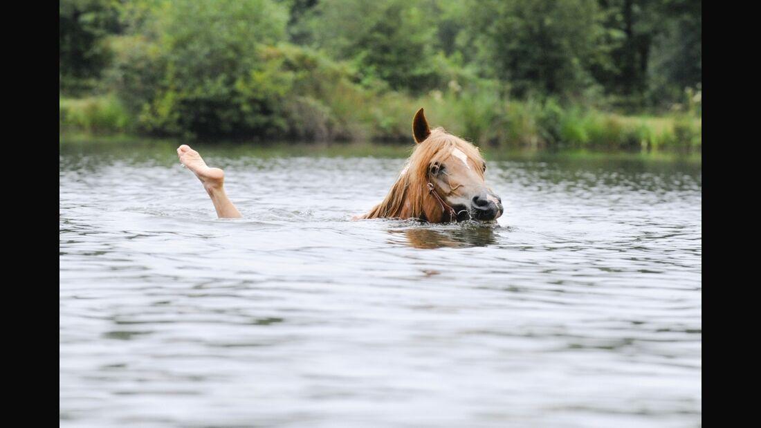 CAV Wasser Baden Schwimmen