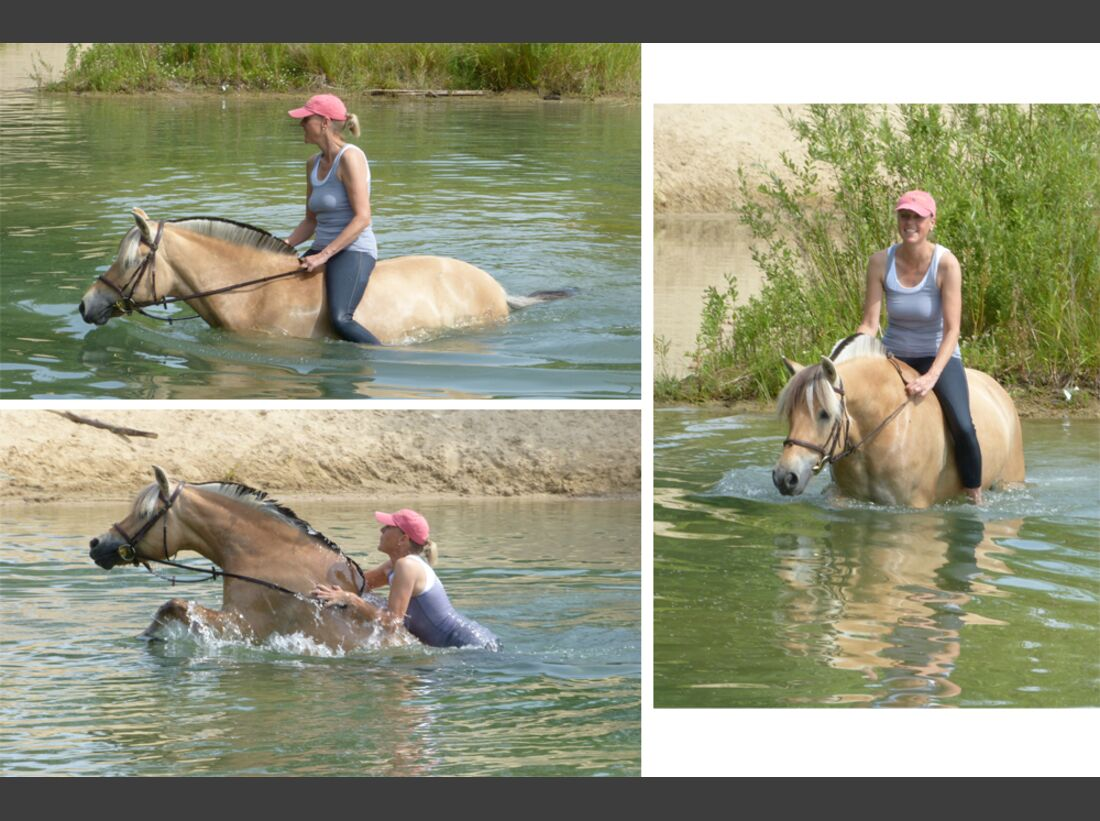 CAV Wasser Pferde Baden Leserfotos Astrid Schnieder
