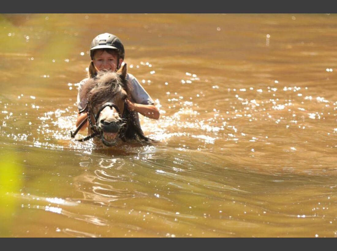 CAV Wasser Pferde Baden Leserfotos Ilona Dudley