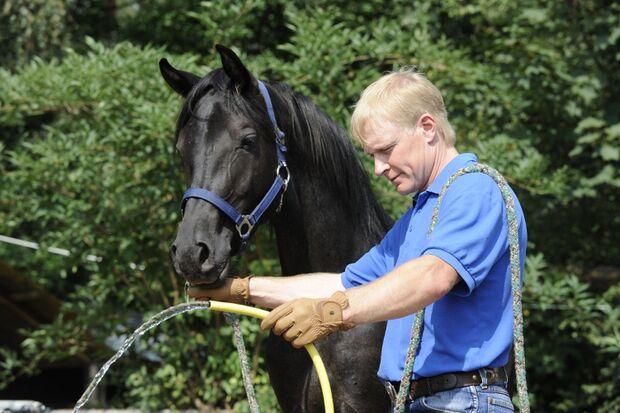 CAV Wasser Wasser-Training Stefan Valentin Horsemanship_09