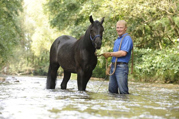 CAV Wasser Wasser-Training Stefan Valentin Horsemanship_20
