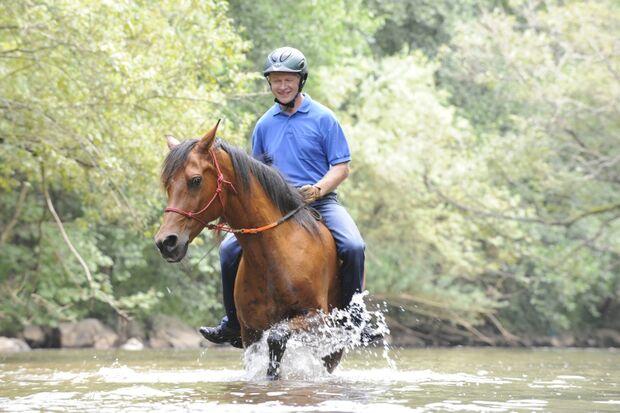 CAV Wasser Wasser-Training Stefan Valentin Horsemanship_21