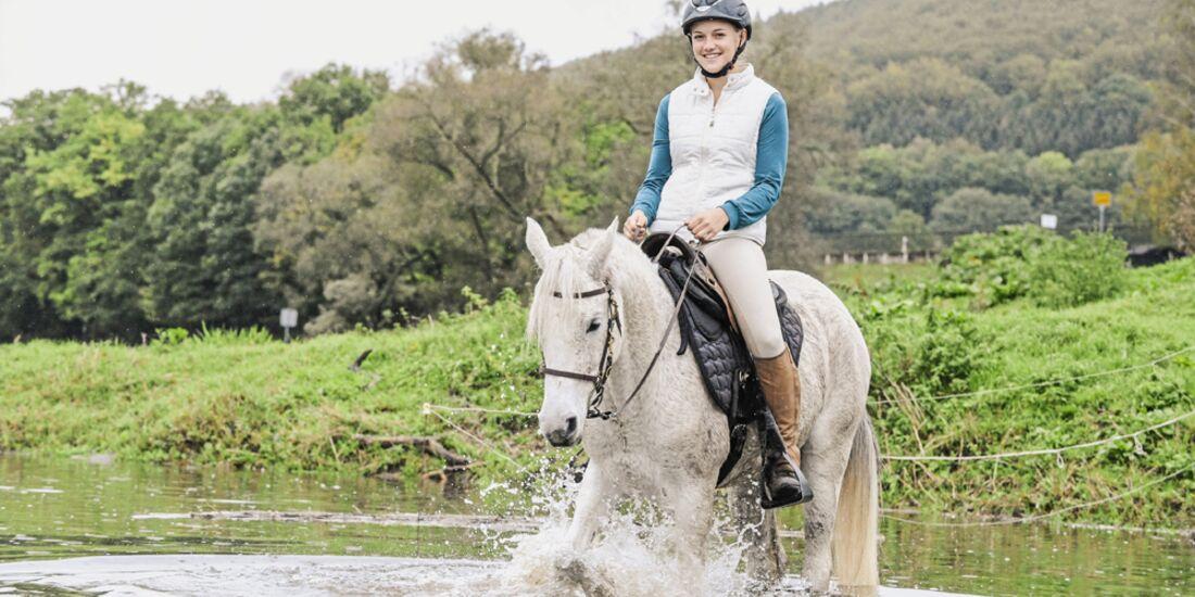 Wassertraining: So gewöhnen Sie Ihr Pferd ans Wasser
