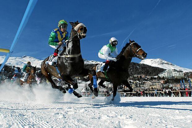 CAV White Turf St. Moritz_aaza9943 (jpg)
