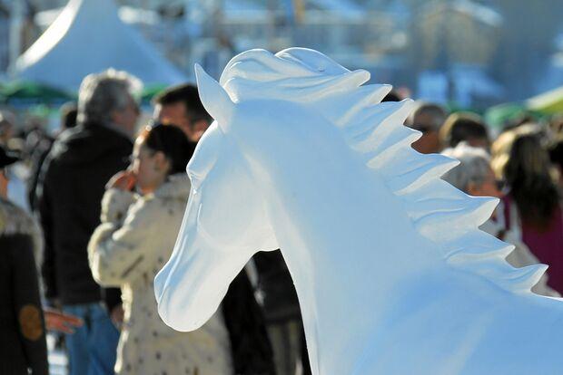 CAV White Turf St. Moritz_amab3965 (jpg)
