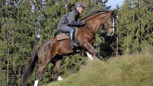 CAV Wintertraining Gelände Andreas Frey