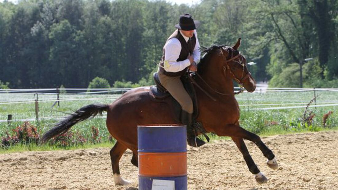 CAV-Working-Equitation-Lengelshof-1 (jpg)