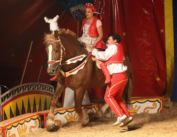 CAV Zirkus Olympia Springfeldt MS