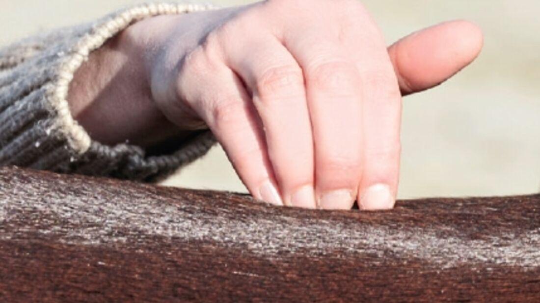 CAVALLO-Dossier: Pferderücken-Special