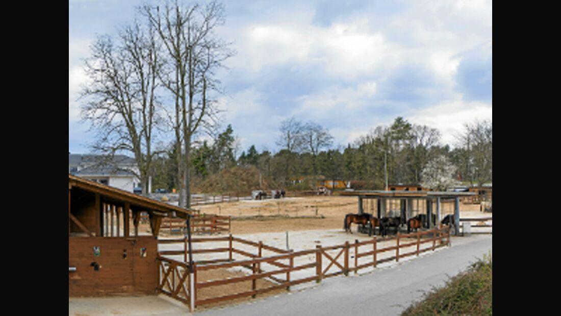 CAVALLO Stall-Scout - Dressur- und Aktivstall Trittau