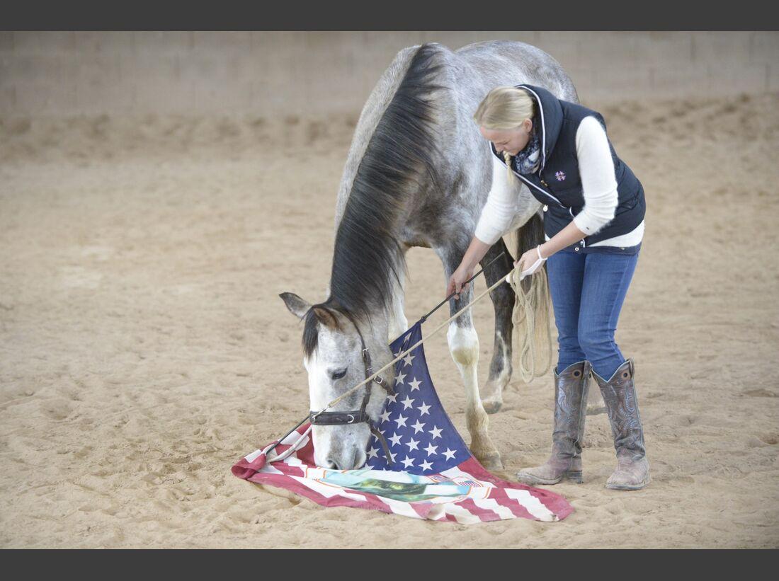 CAv Amour Gelassenheitstraining Fahne