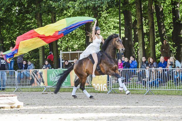 CAv Cavallo Cup Sieger Mediashow 2018 Lisa Röckener