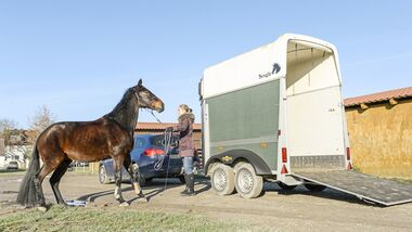 Cavallo Coach