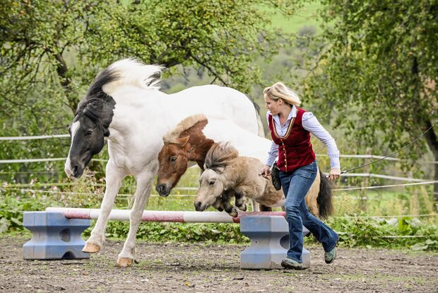 Cavallo hautnah - Supertalente
