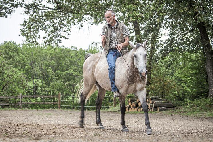 Der Chef-Trainer Bernd Osterhammel