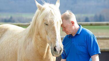 Dösen mit dem Pferd