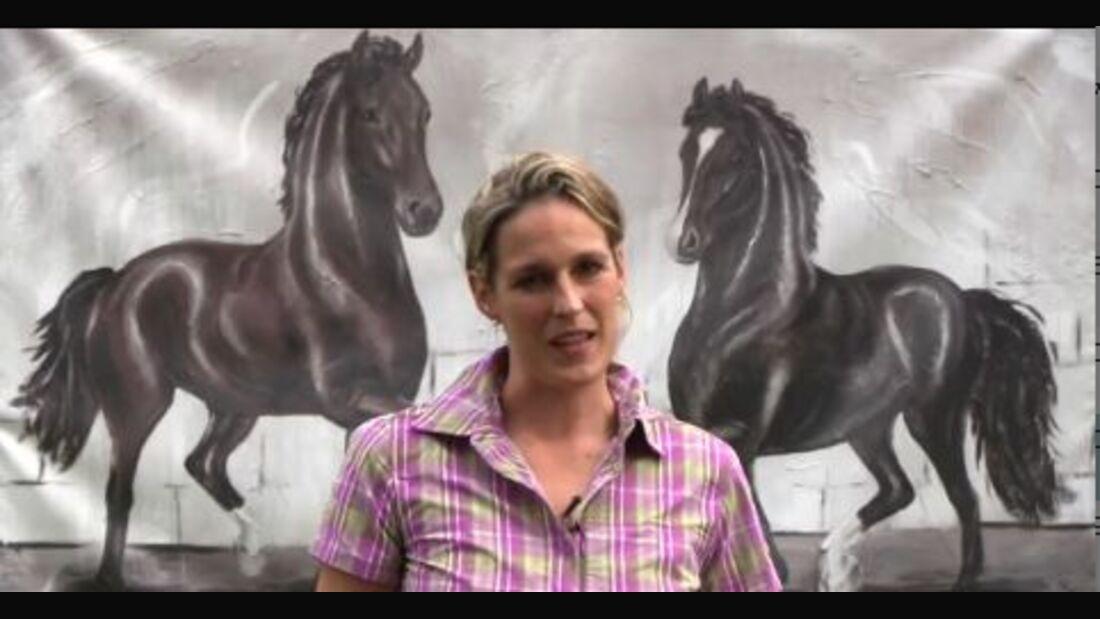 DressurCoach-Tipp 02 - Schritt-Galopp-Übergänge mit Deinem Pferd erarbeiten