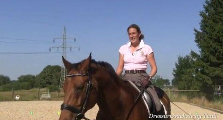 DressurCoach-Tipp 07 - Absprachen mit Deinem Pferd - 100 Energie!