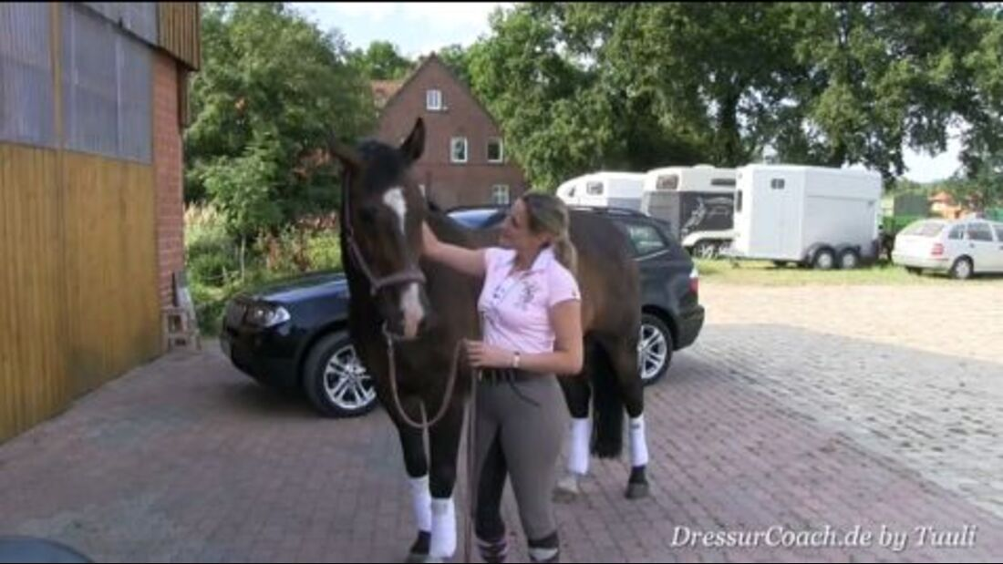 DressurCoach-Tipp 08 - Deinem Pferd den fliegenden Wechsel erklären