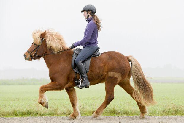 Frau reitet auf Isländer nach der Sitzschulung