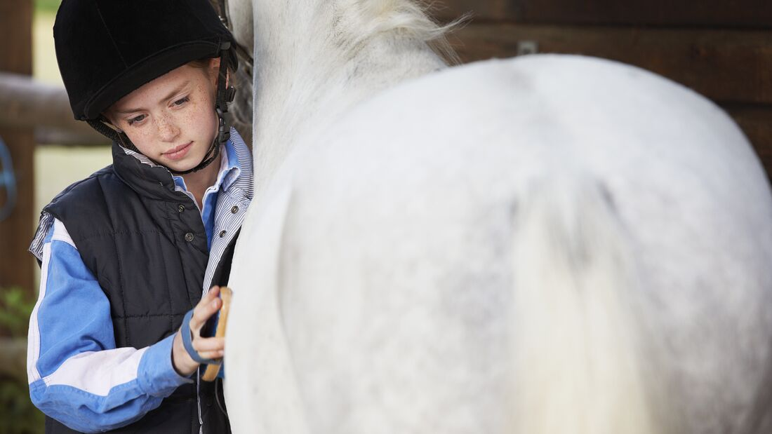 Girl grooming her pony