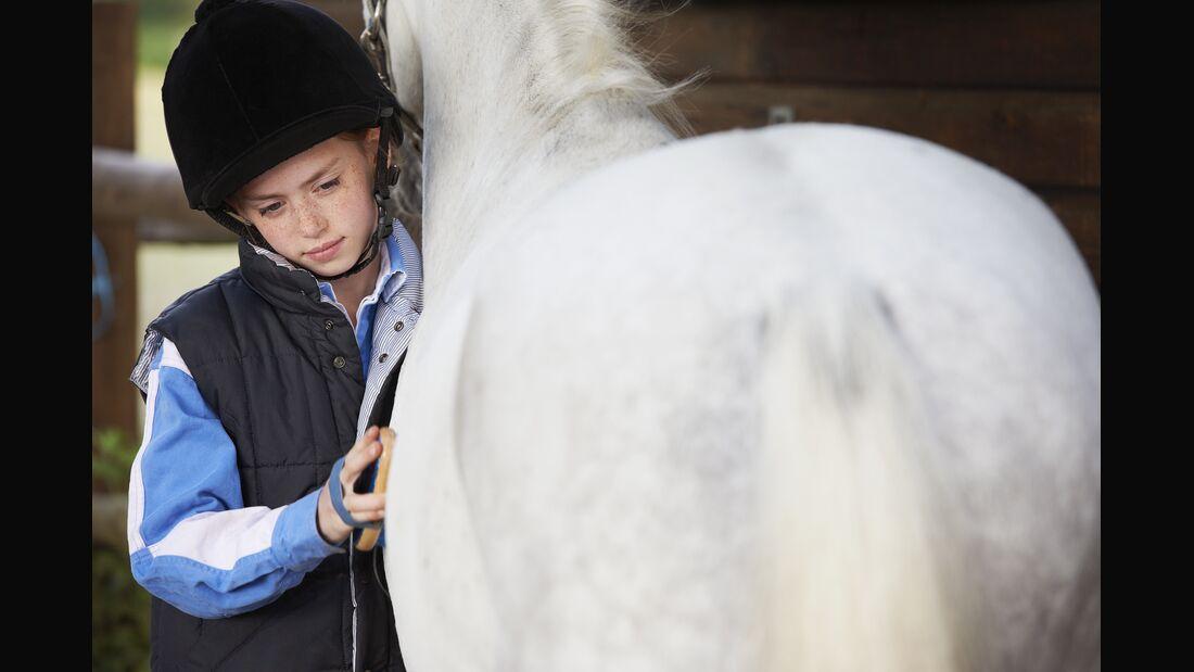Girl grooming her pony