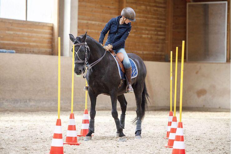 Lisa in fremden Sätteln - Working Equitation