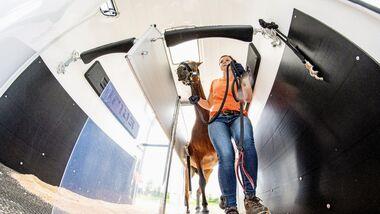 Mit dem Pferd auf Tour