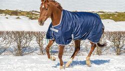 Pferd im Schnee mit Pferdedecke